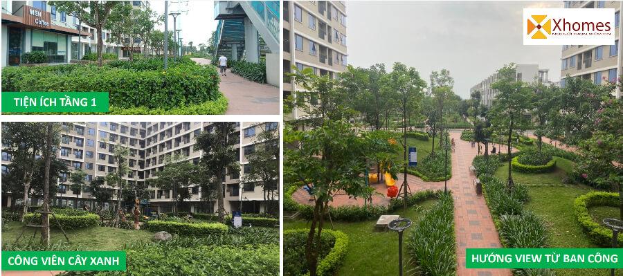 Hình ảnh thực tế tại dự án Viglacera Đông Tiến Yên Phong Bắc Ninh