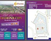 Tổng thể dự án Đất Nền Khu Đấu Giá Diamond City
